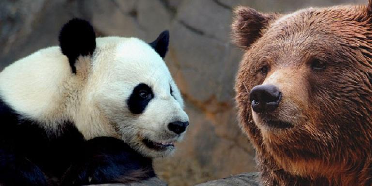 Chiny vs Rosja