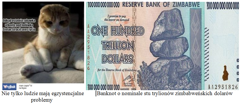 Dollar Zimbabwe