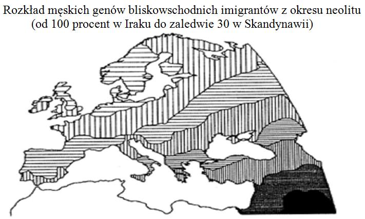 Rozklad_genow_neolit