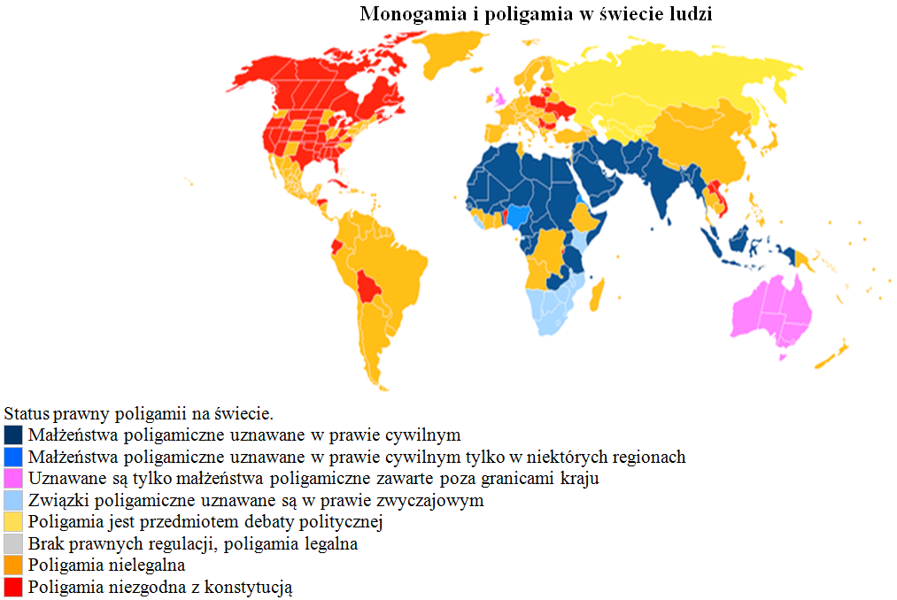 Monogamia poligamia