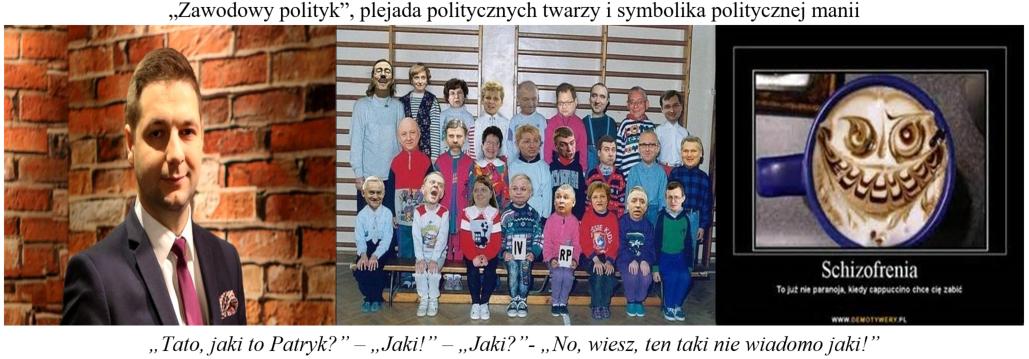 Zawodowy polityk
